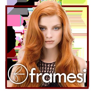 cta_framesi